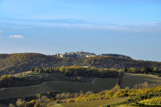 the historical chianti