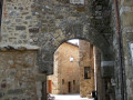 Castelnuovo Berardenga e il suo territorio